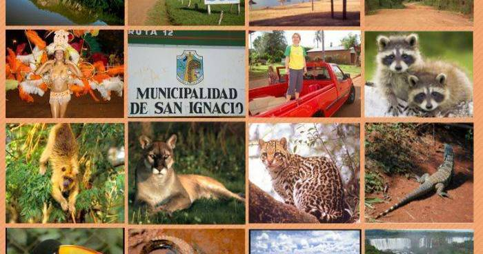 cheap hotels in San Ignacio Mini
